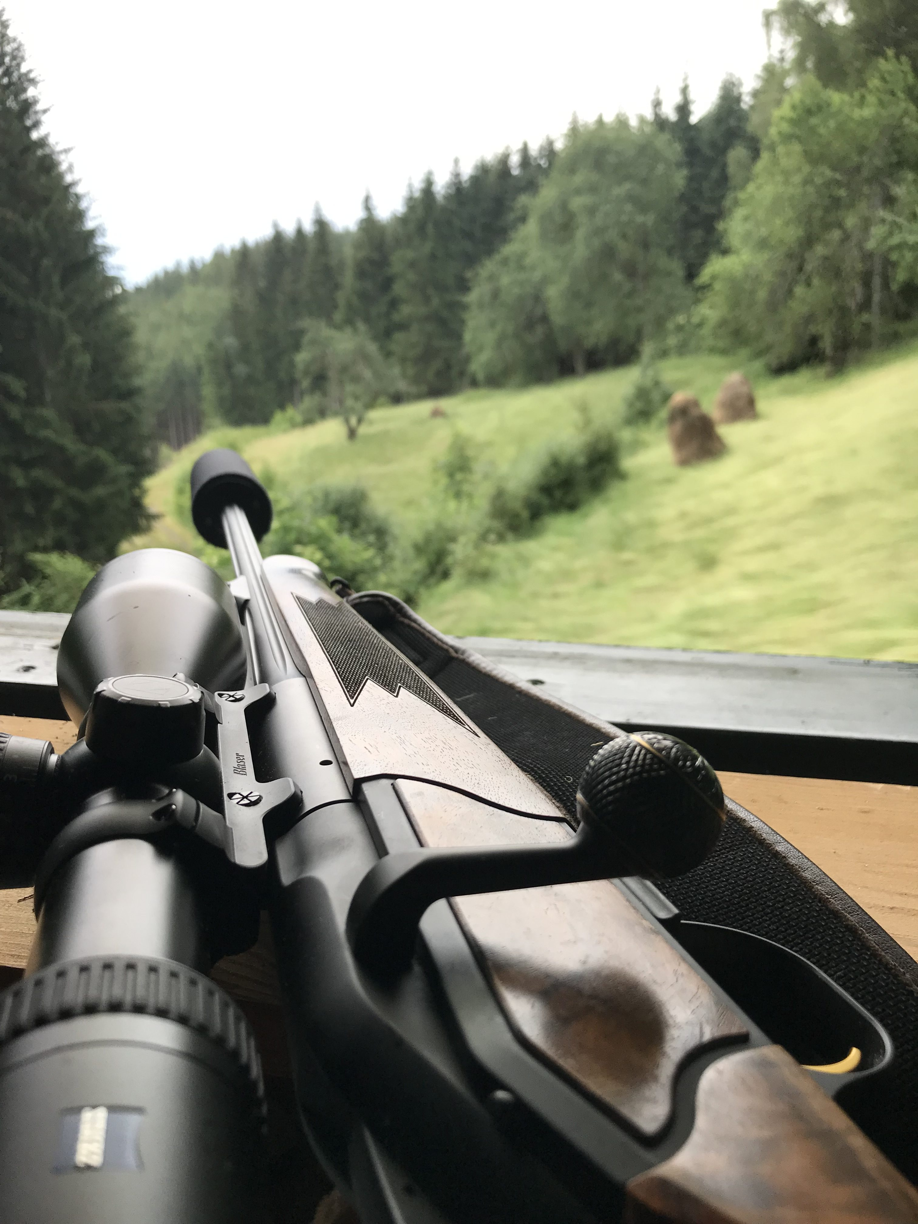 Ist die Jagd systemrelevant?